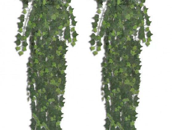 Klim-Op bloemen- planten