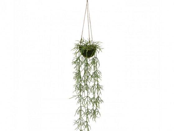 Rhipsalis hangende kunstplant planten- bloemen